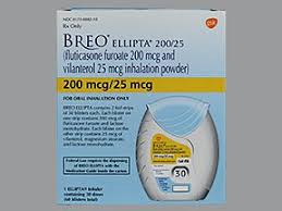 Image result for Breo